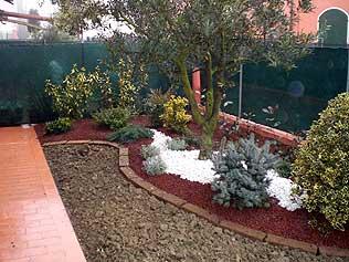Vivai mediplants a camposanto di modena offre una vasta for Realizzazione giardini privati